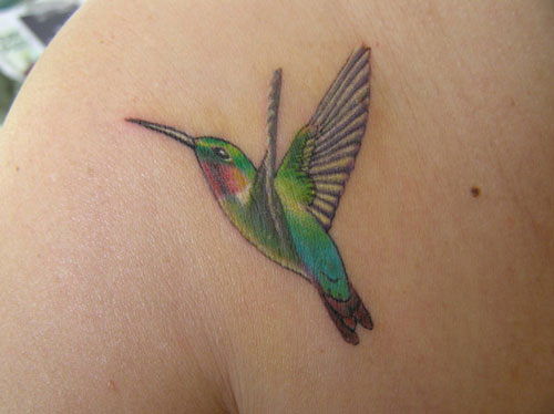 Hummingbird Tattoos Creativefan