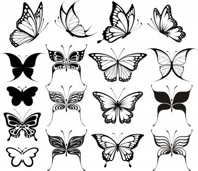 Different Vector Butterfly Tattoo Designs