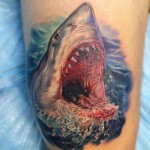 Shark Tattoo Design